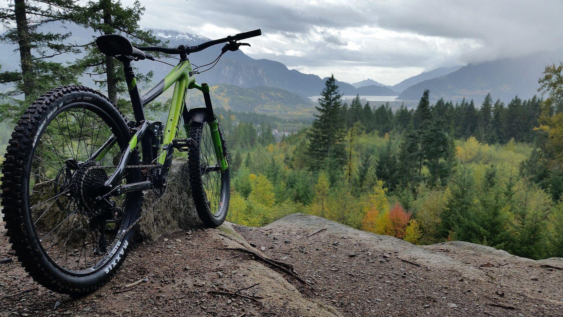 Horské bicykle Lovelec